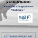 """Curso teoría y técnica en la Clínica Relacional. """"Pluralidad e Integración en Psicoterapia"""""""